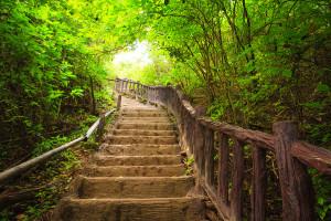 Begin Your Journey Toward Healing